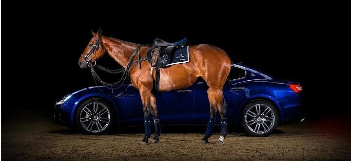 Maserati Horse saddles